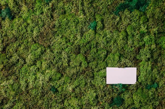 Bespotten van visitekaartjes op een achtergrond van groen mos. concept op het thema van de natuur.