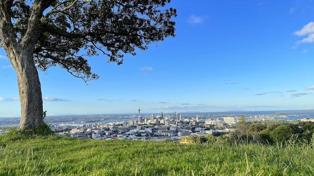 Beste uitzicht op de skyline van auckland vanaf de top van mt eden