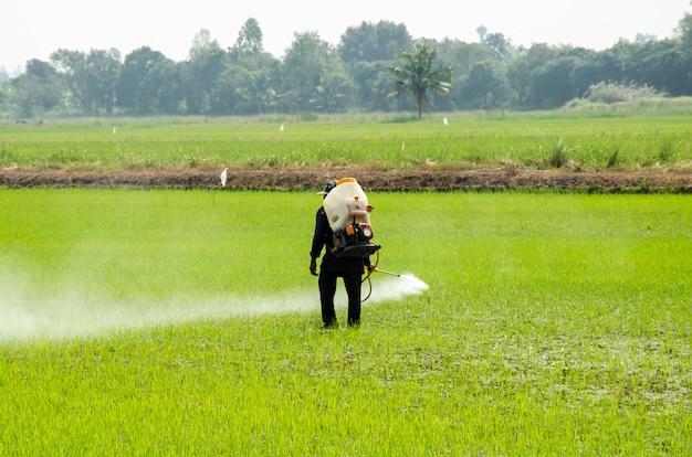 Bestrijdingsmiddelen uit rijst