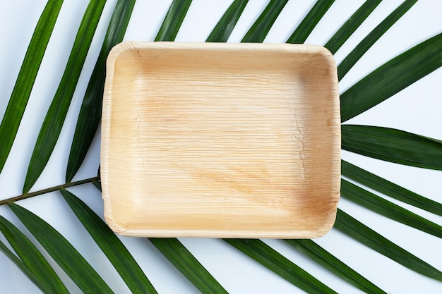 Betel palm blad plaat op witte achtergrond.