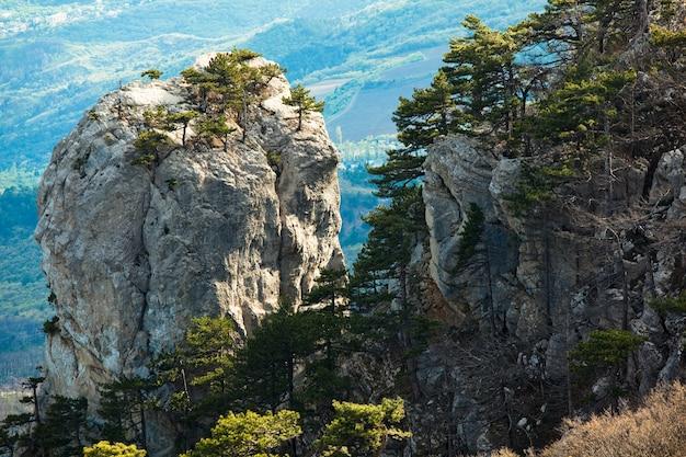 Betoverend en schilderachtig landschap van hoge steile kliffen die erop groeien met groene coniferen in een ecologisch schoon heuvelachtig gebied
