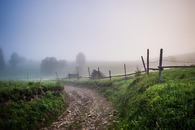 Betoverend mystiek landschap van een weg en bos dat groeit op een berghelling bedekt met dikke mist op een warme zomerochtend