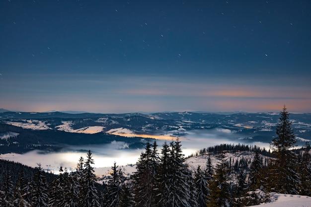 Betoverend nachtlandschap, besneeuwde sparren groeien tussen sneeuwbanken