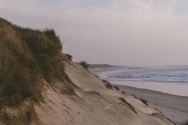 Betoverend uitzicht op een zandstrand met de oceaan
