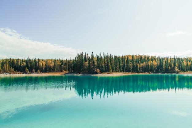 Betoverend uitzicht op het meer met weerspiegeling van de dennenbomen, de bergen en de bewolkte lucht