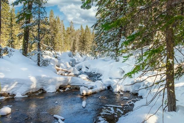 Betoverende opname van een prachtig besneeuwd rotsachtig park rond de rivier