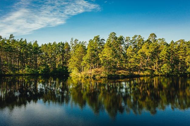 Betoverende opname van een rustig meer omringd door bomen