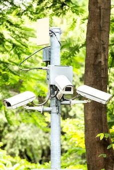 Beveiliging cctv drie camera in het park op boom