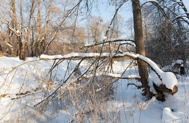 Bevroren rivier tijdens de winter e