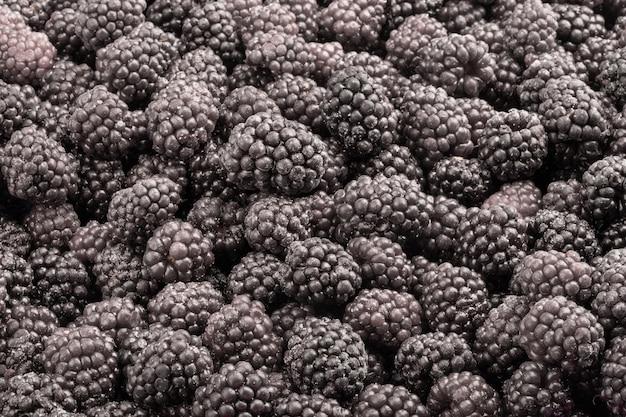 Bevroren verse bramen. voedselachtergrond van bessen.