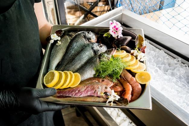 Bevroren zie voedsel op ijs. garnalen, vis en schelpen.