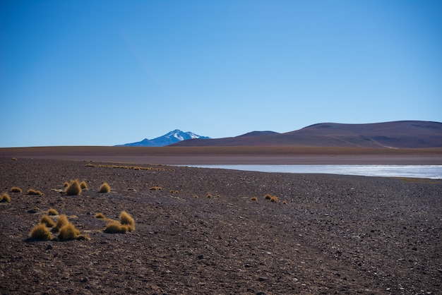Bevroren zoutmeer aan de andes