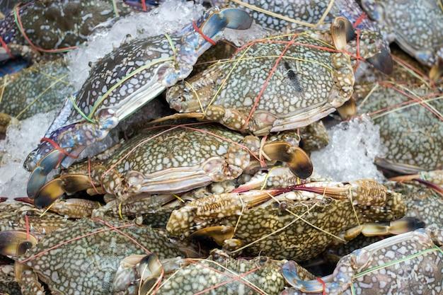 Bewaar verse krab op ijs voor zeevruchten