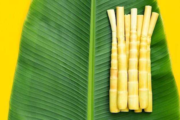 Bewaarde bamboescheuten op bananenblad op gele achtergrond.