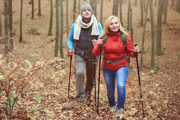 Bewegen op een heuvel in het bos