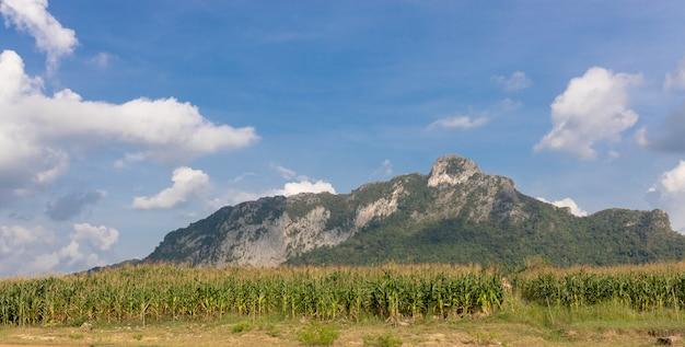 Big mountain met sky en cloud achtergrond
