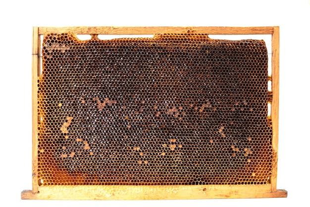 Bijen honingraten