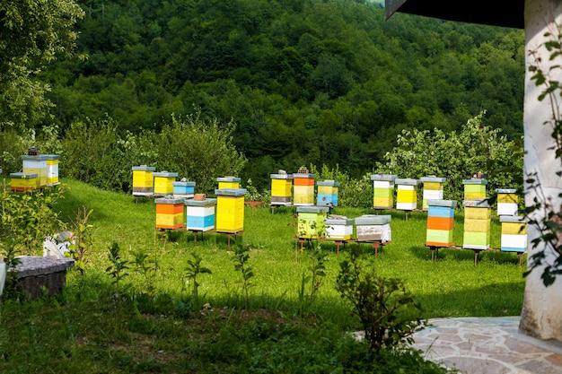 Bijenkorven in de bijenstal