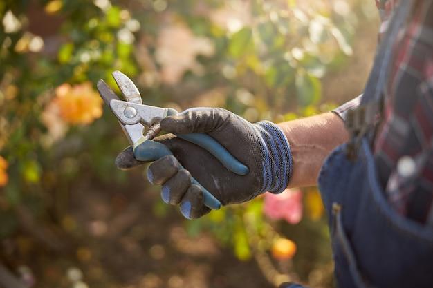 Bijgesneden foto van een man die handschoenen draagt en een tang in zijn hand houdt terwijl hij naast planten staat