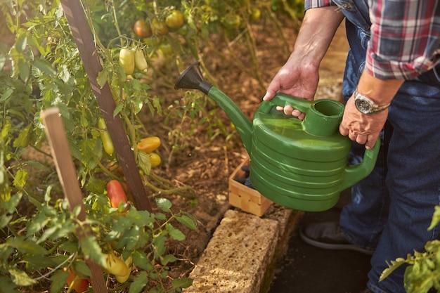 Bijgesneden foto van een tuinman die een gieter vasthoudt om zijn planten water te geven
