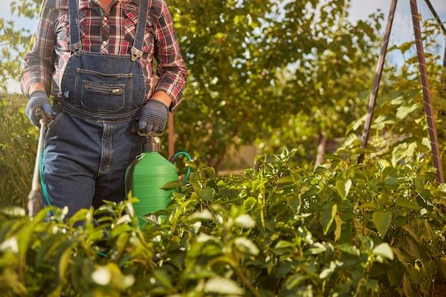 Bijgesneden foto van een tuinman die een spuittank draagt terwijl hij planten in zijn tuin spuit