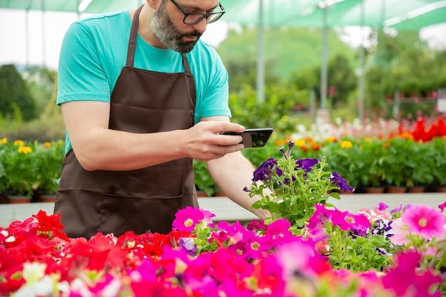 Bijgesneden weergave van mannelijke tuinman potplanten schieten op mobiele telefoon