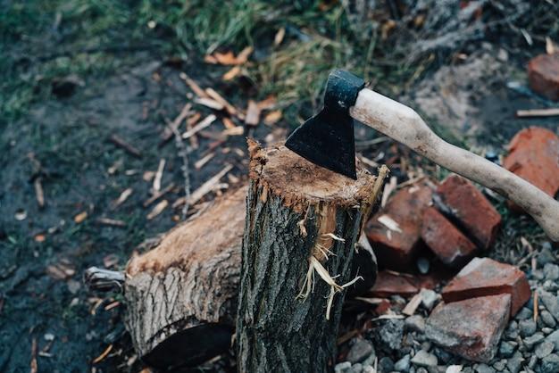 Bijl steekt uit in de boomstronk en snijdt brandhout in de frisse lucht voor de winter.