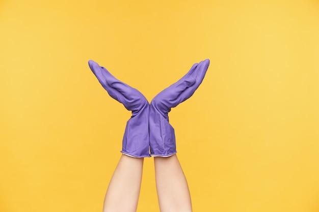 Binnenfoto van twee handen die samen met de handpalmen worden gevouwen terwijl ze poseren op een gele achtergrond in violette rubberen handschoenen, plezier maken tijdens het schoonmaken van het huis