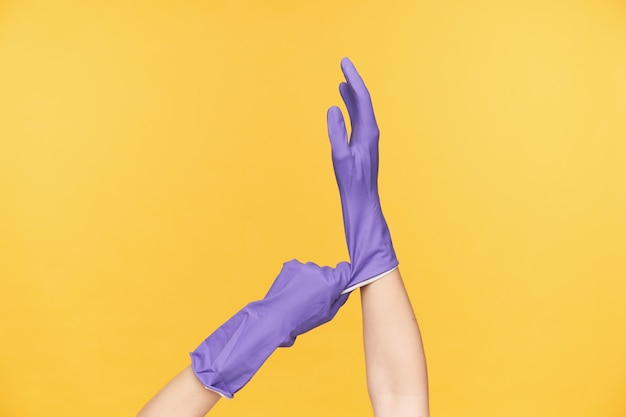 Binnenfoto van vrouwelijke handen die worden opgeheven terwijl ze poseren op een gele achtergrond, een violette rubberen handschoen trekken tijdens het passen voordat ze de voorjaarsschoonmaak maken