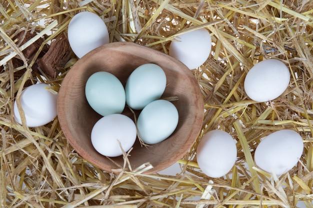 Bio-ei-stilleven, inclusief ook coloful araucana kippeneieren