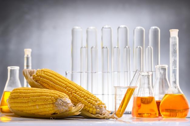 Biobrandstof of glucosestroop, benzine, energie, milieuactivist