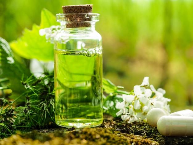 Biologische bio alternatieve geneeskunde, kruidengeneeskunde, flessen gezonde etherische olie of infusie en droge geneeskrachtige kruiden.