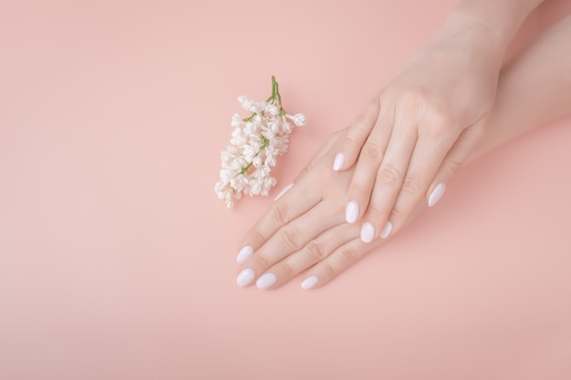 Biologische cosmetica. vrouwelijke handen op roze achtergrond, witte lila. bovenaanzicht mockup