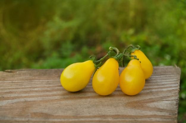 Biologische gele perentomaat. tomaat genaamd gele druppel. natuurlijke biologische gezonde voedingstomaat.