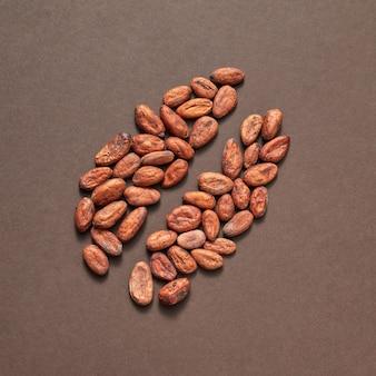 Biologische natuurlijke grote bonen pettern van cacaoperwten