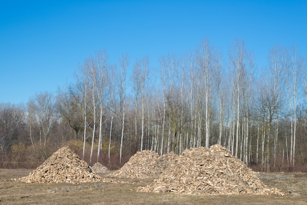 Biomassa uit teruggooi van de houtindustrie