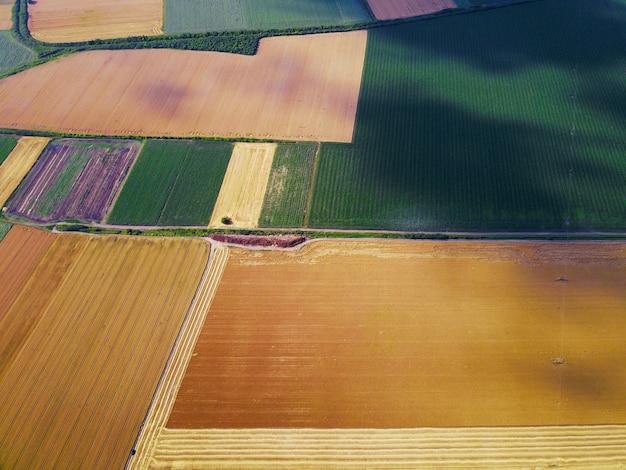 Bird's eyes bovenaanzicht foto van vliegende drone van tarwevelden op het platteland.