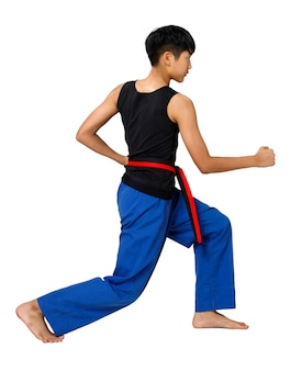 Black red belt taekwondo karate kid atleet tiener toon traditionele fighting poses poomsae in sport uniforme jurk, 15 jaar oude jongen, studio verlichting witte achtergrond geïsoleerd volledige lengte profiel