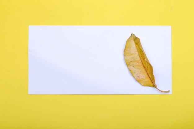 Blad en leeg wit papier met een gekleurde achtergrond. leeg witboek voor exemplaarruimte