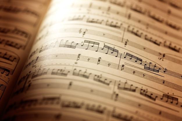 Bladen met muzieknoten, vergrote weergave