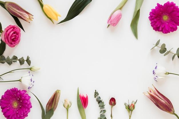 Bladeren en bloemenframe met witte exemplaar ruimteachtergrond