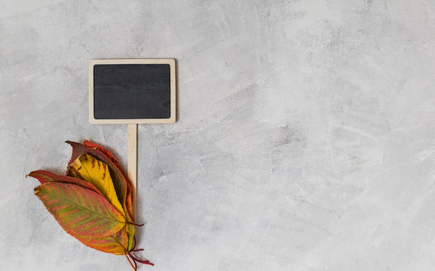 Bladeren en schoolbord