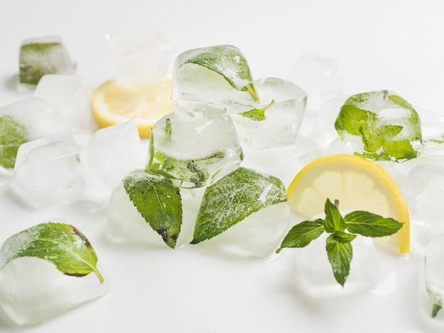 Bladeren in blokjes ijs met citroenen