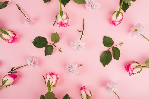 Bladeren in de buurt van rozen en madeliefjes