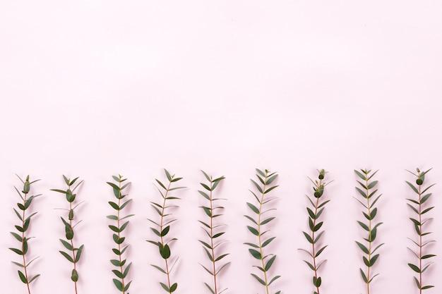Bladeren op roze achtergrond, plat lag, bovenaanzicht
