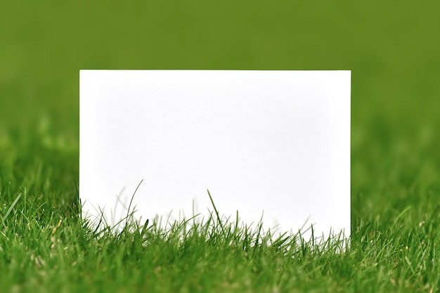 Blanco papier geschoten buiten over groen gras