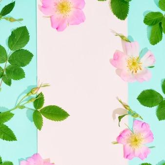 Blanco papier voor tekst met frame van wilde roze bloemen op blauwe achtergrond.