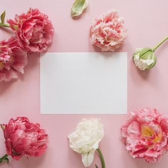Blanco vel papier kaart in ronde frame van roze en witte pioenroos tulp bloemen op roze. plat lag, bovenaanzicht