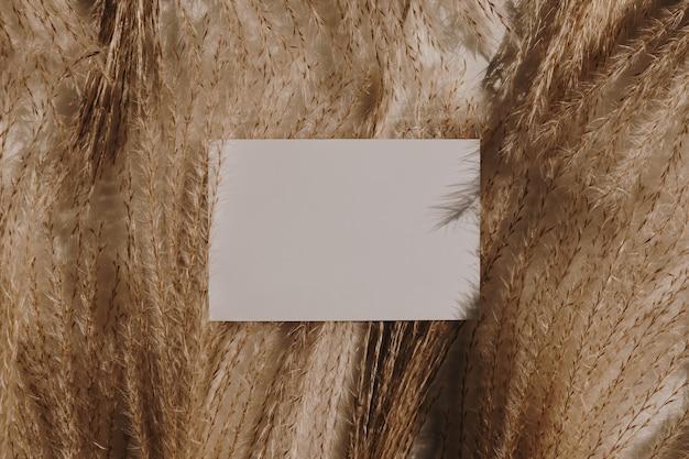 Blanco vel papier kaart op pampagras