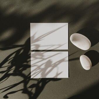 Blanco vel papier kaarten met kopie ruimte, droge bloemtak, stenen en zonlicht schaduwen op donkergroen